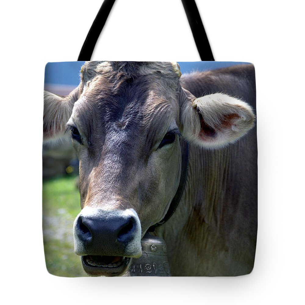Cow Tote Bag featuring the photograph Cow by Flavia Westerwelle