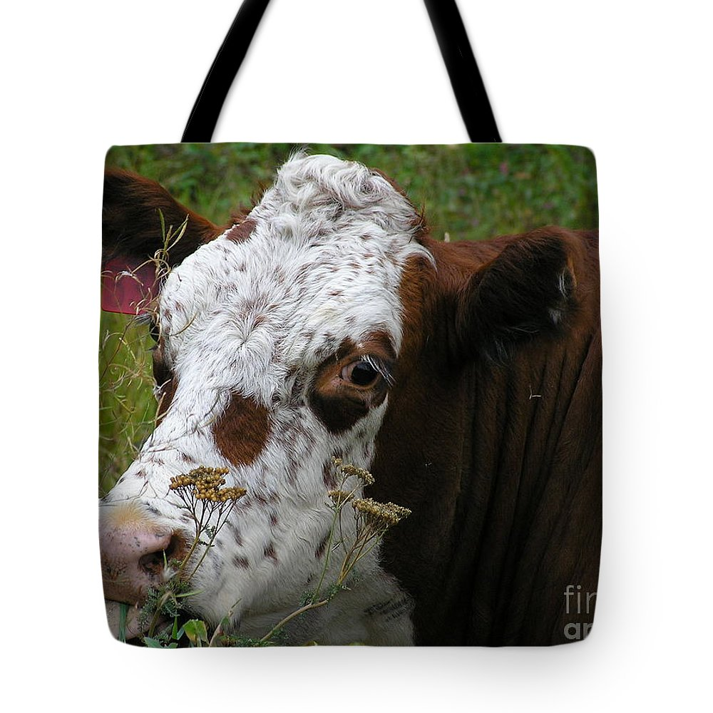 Tongue Tote Bag featuring the photograph Cow Tongue by Louise Magno