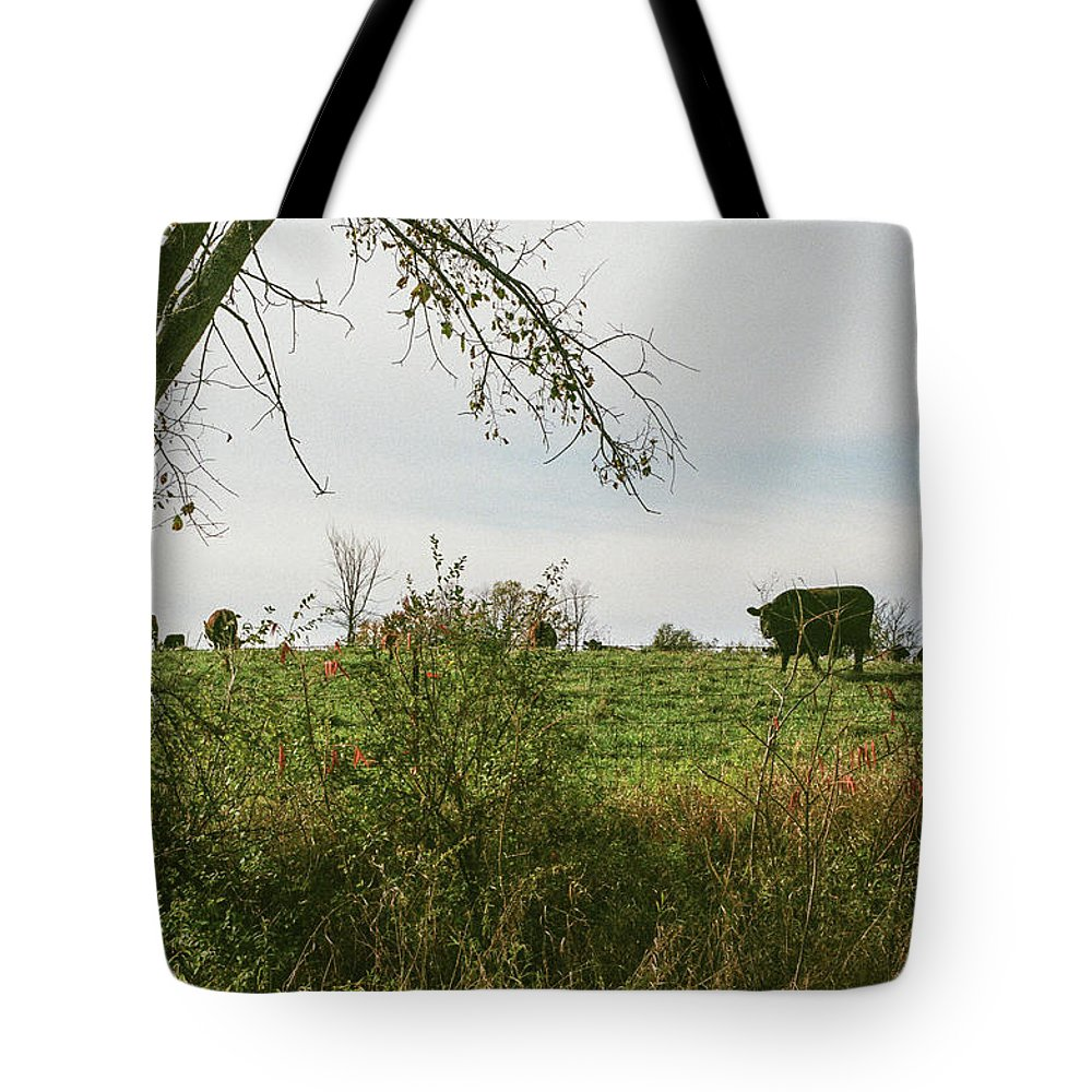 35mm Film Tote Bag featuring the photograph Cows And Farm In Michigan by John McGraw