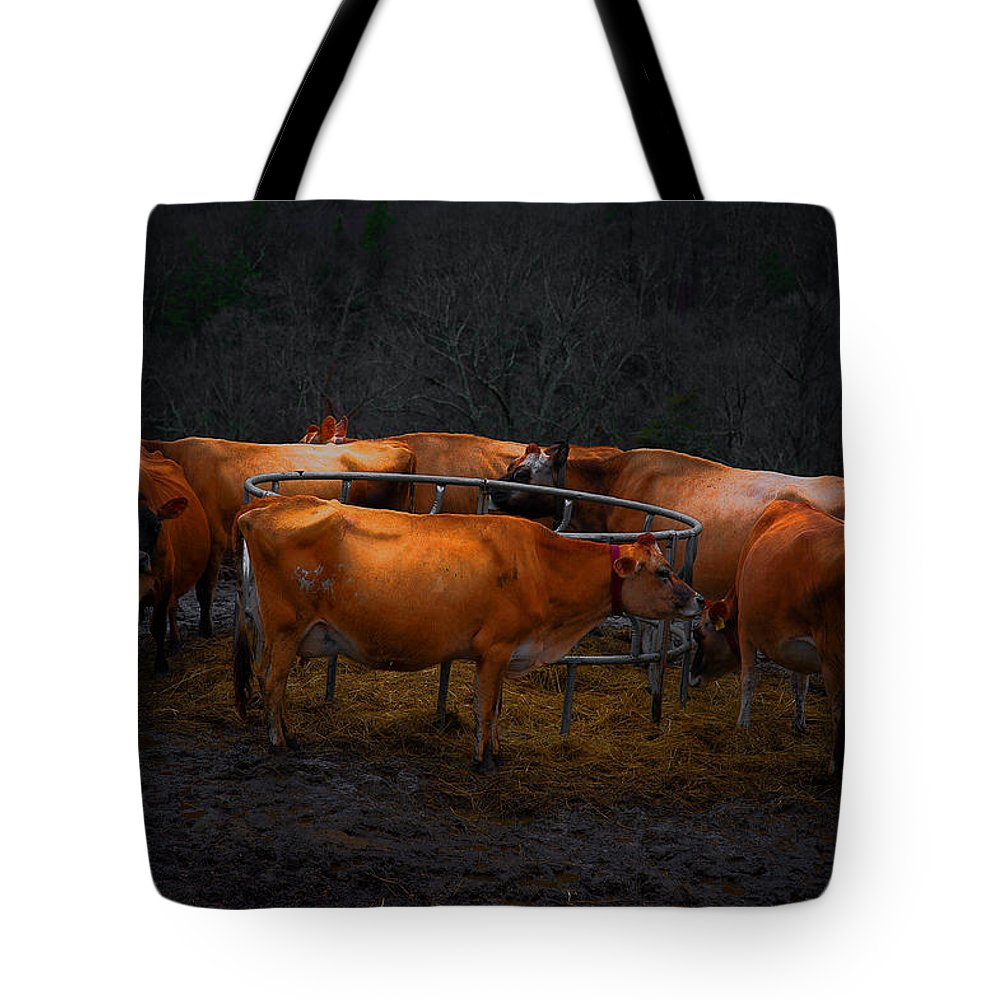 Cows Tote Bag featuring the photograph Cows by Laszlo Gyorsok