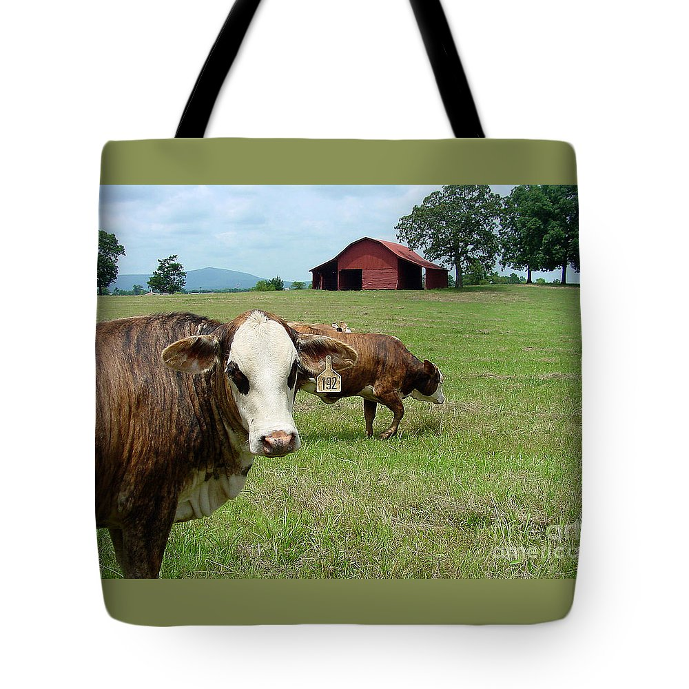 Cow Tote Bag featuring the photograph Cows8986 by Gary Gingrich Galleries