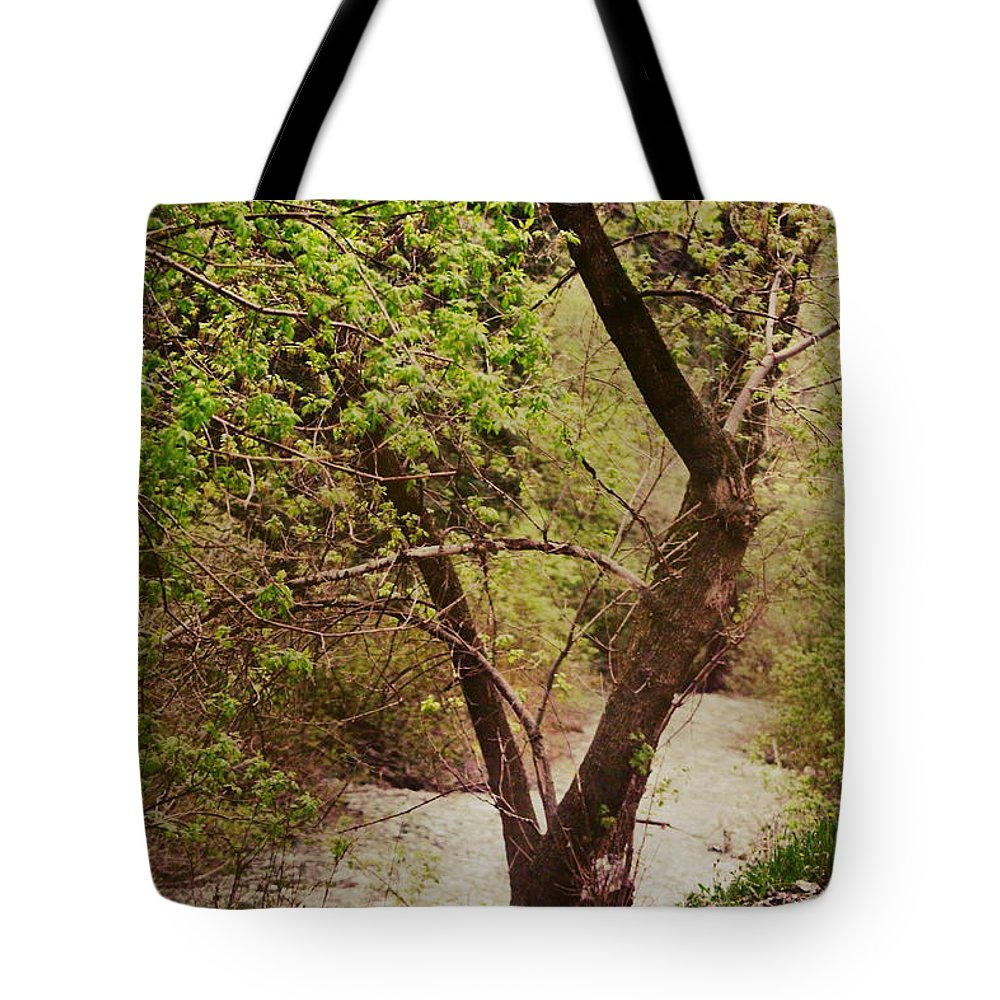 Dreamy Tote Bag featuring the photograph Cozy Stream in American Fork Canyon Utah by Colleen Cornelius
