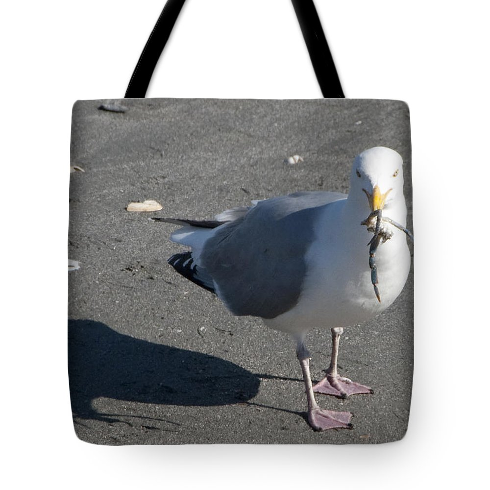 Seagull Tote Bag featuring the photograph Crab Plate by Steven Natanson