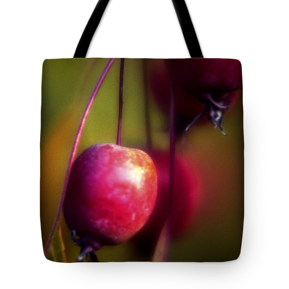 Macro Tote Bag featuring the photograph Crabapple by Lee Santa