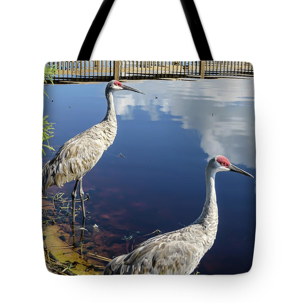Birds Tote Bag featuring the photograph Cranes At The Lake by Zina Stromberg