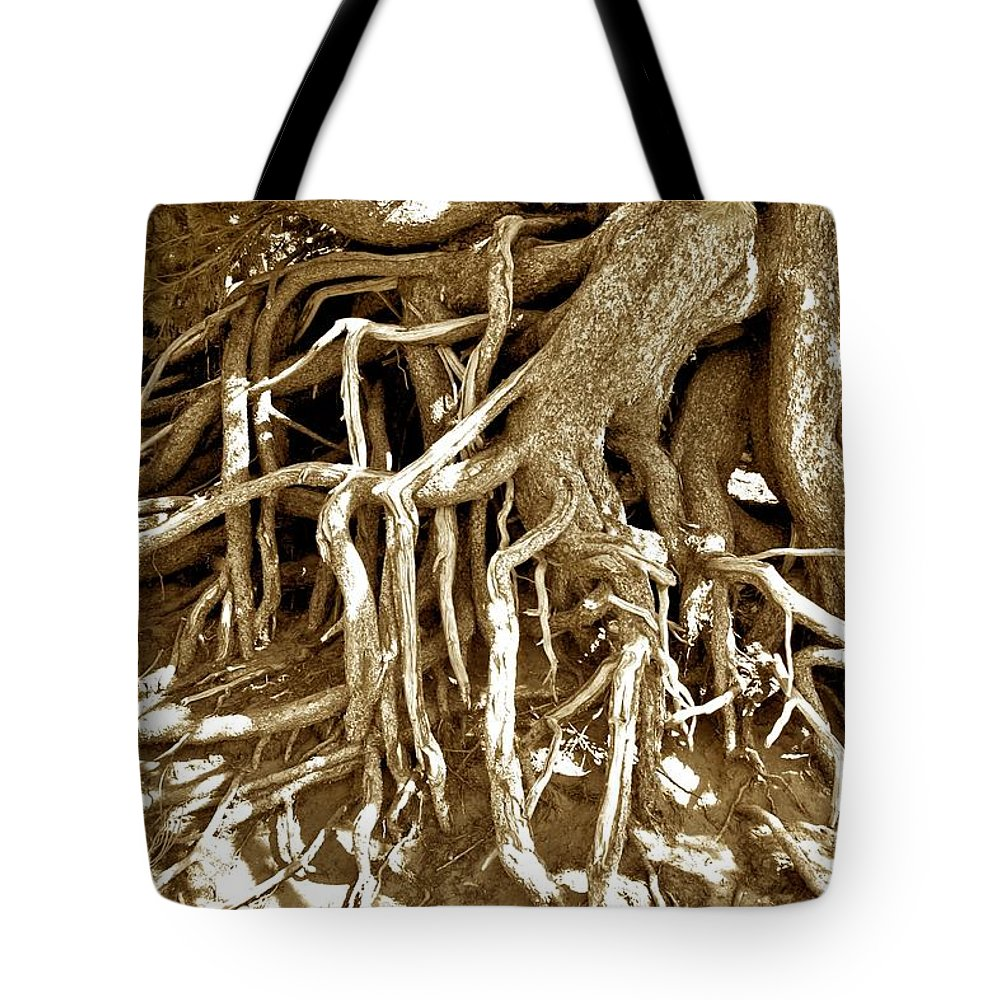 Crater Tote Bag featuring the photograph Crater Lake Tree by Calvin Nelson