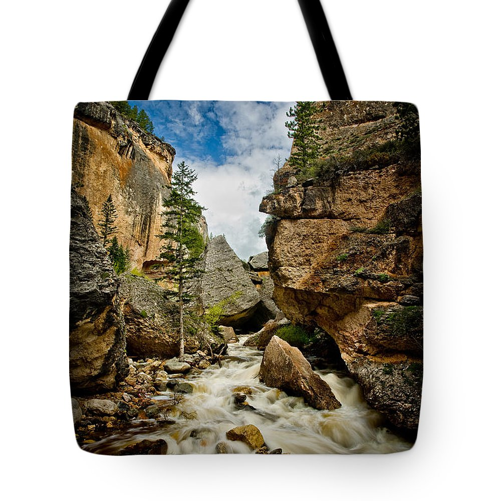 Canyon Tote Bag featuring the photograph Crazy Woman Canyon by Rikk Flohr
