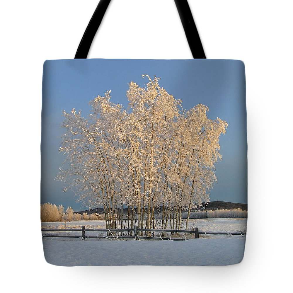 Snow Tote Bag featuring the photograph Creamer Field by Louise Magno