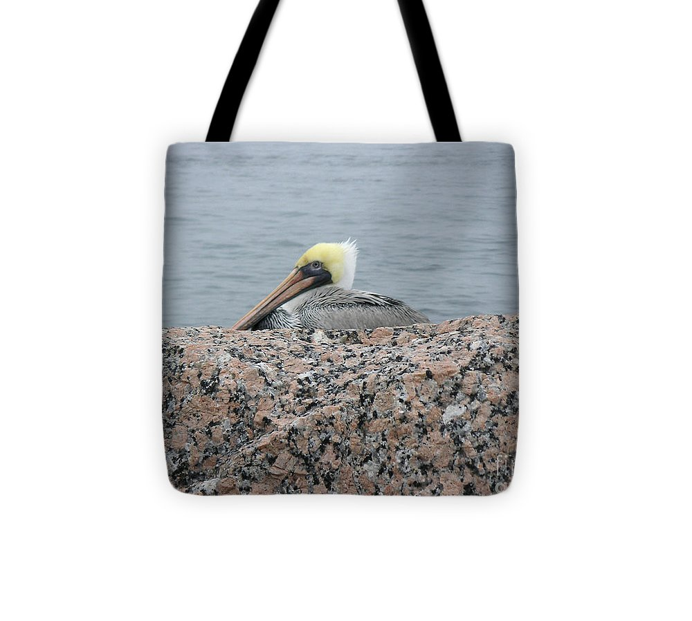 Nature Tote Bag featuring the photograph Creatures Of The Gulf - Hiding Out by Lucyna A M Green