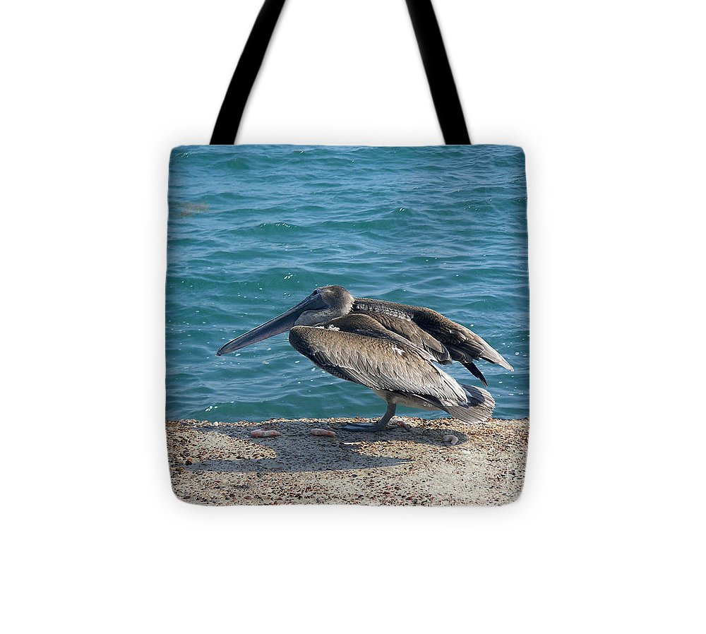 Nature Tote Bag featuring the photograph Creatures Of The Gulf - Scratch N' Sniff by Lucyna A M Green