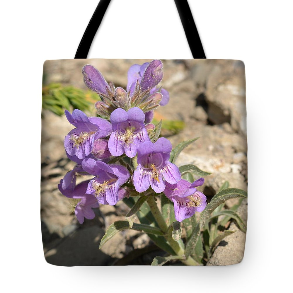 Nature Tote Bag featuring the photograph Crested Beardtongue by Ed Mosier