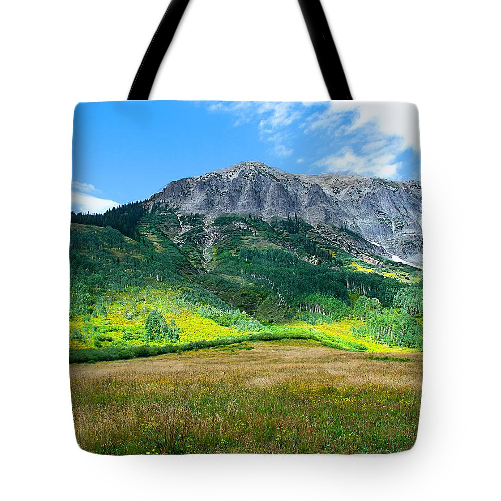 Crested Butte Tote Bag featuring the photograph Crested Butte Aspens by Susan Warren