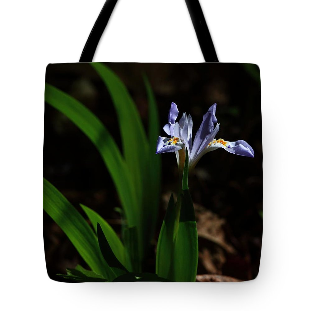 Crested Iris Tote Bag featuring the photograph Crested Iris In Lost Valley by Michael Dougherty