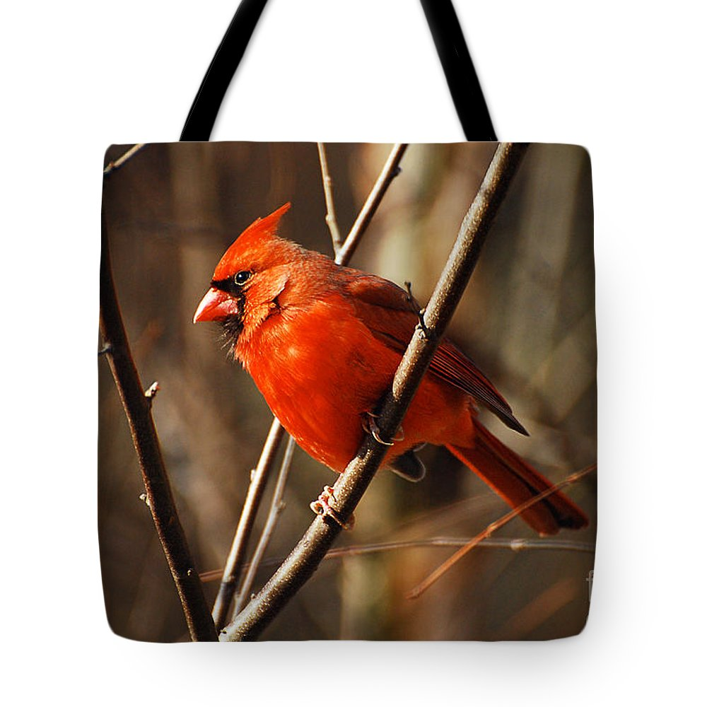 Wildlife Tote Bag featuring the photograph Crimson King by Lois Bryan