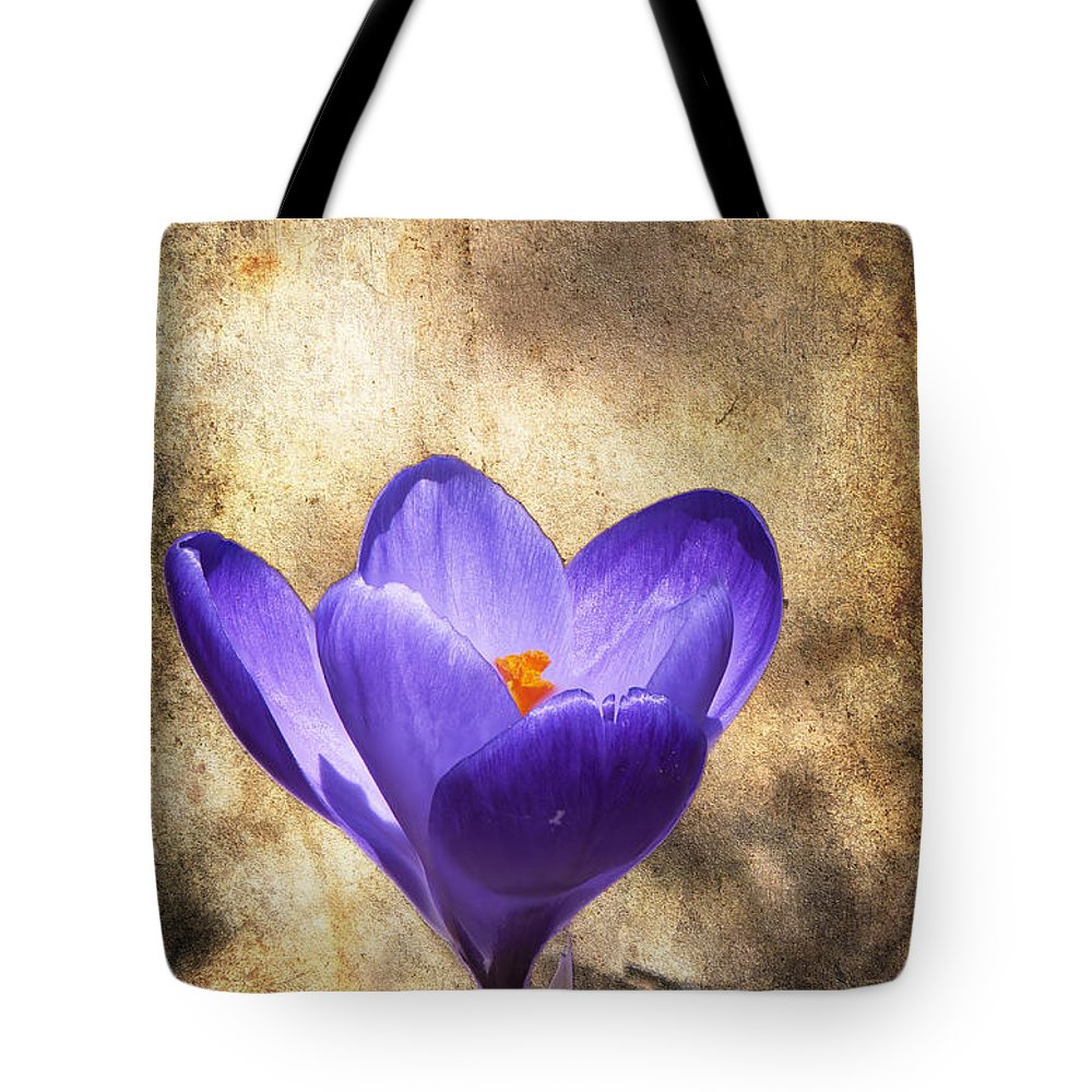 Crocus Tote Bag featuring the photograph Crocus Focus Stacked 2 by Clifford Pugliese