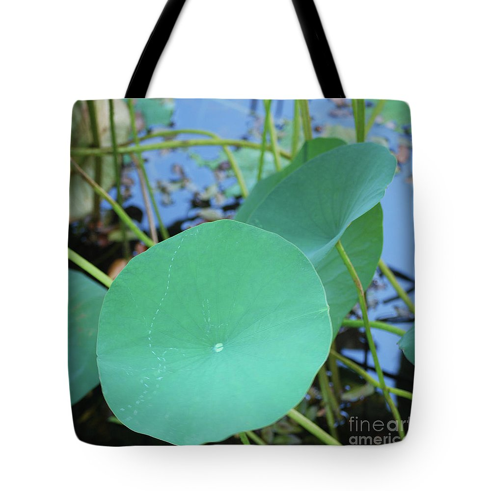 Tote Bag featuring the photograph Crossing The Lily Pond Outback Nubmer Two Square by Heather Kirk