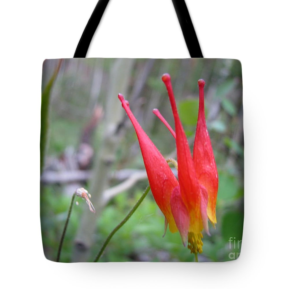 Flowers Of Colorado Tote Bag featuring the photograph Crown by Amanda Barcon