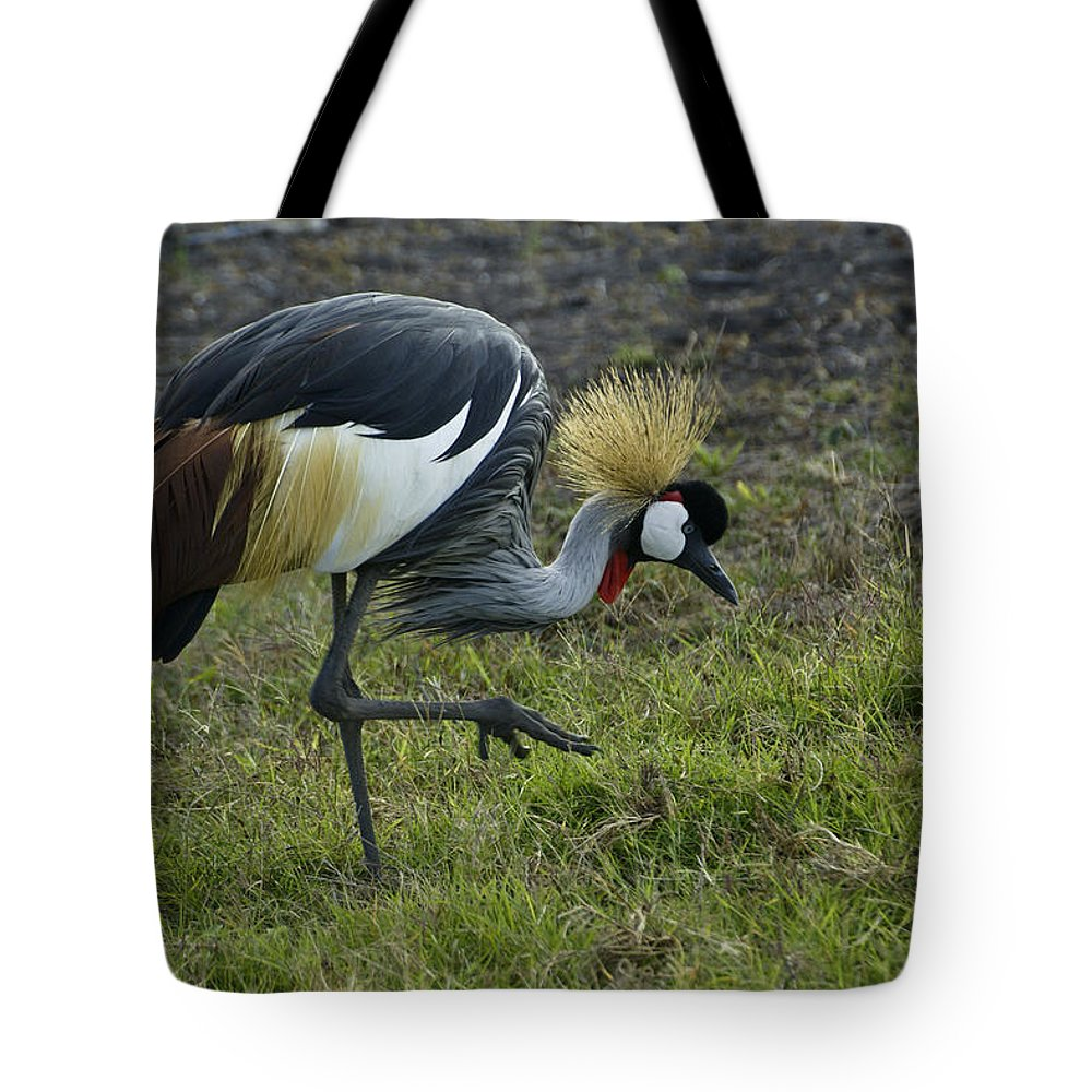Africa Tote Bag featuring the photograph Crowned Crane by Michele Burgess
