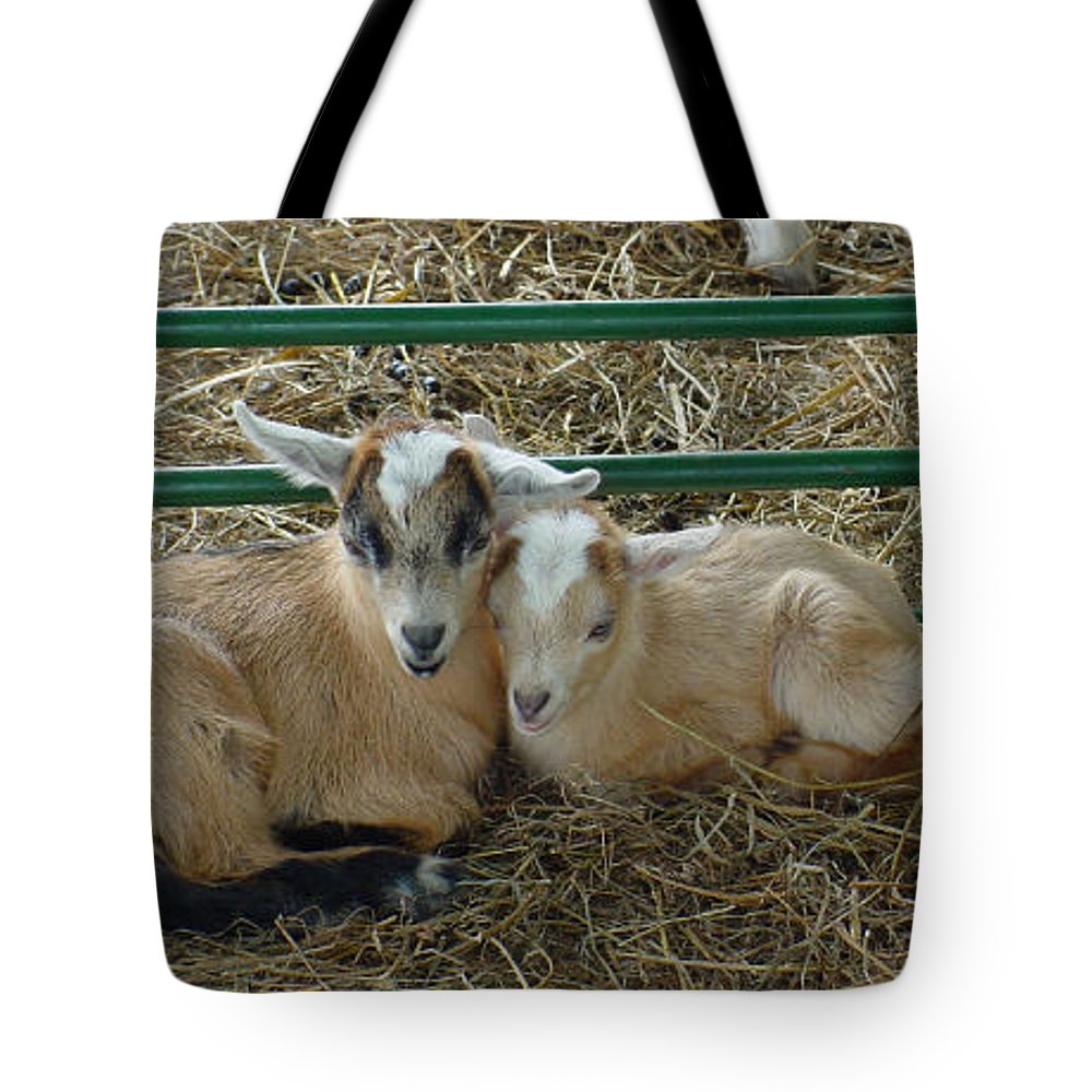 Kids Tote Bag featuring the photograph Cuddles by Marsha Elliott