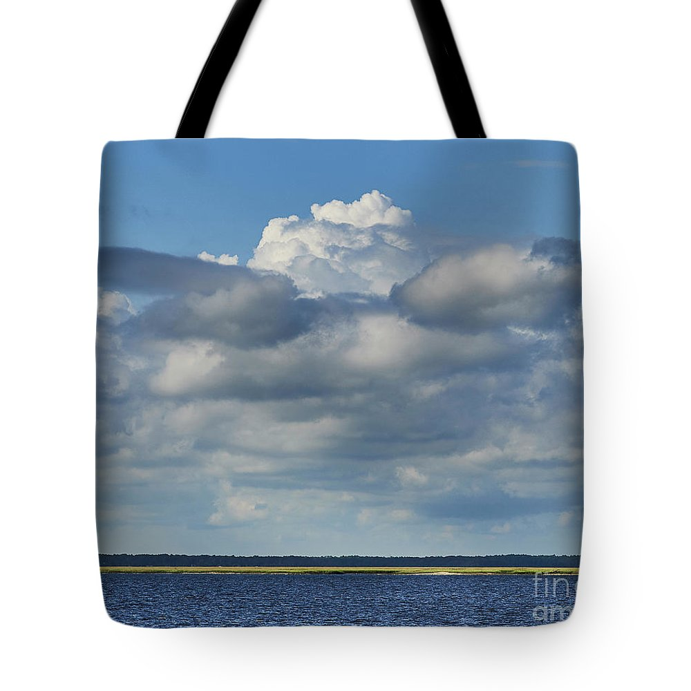 Cumberland Tote Bag featuring the photograph Cumberland Island by Stanton Tubb