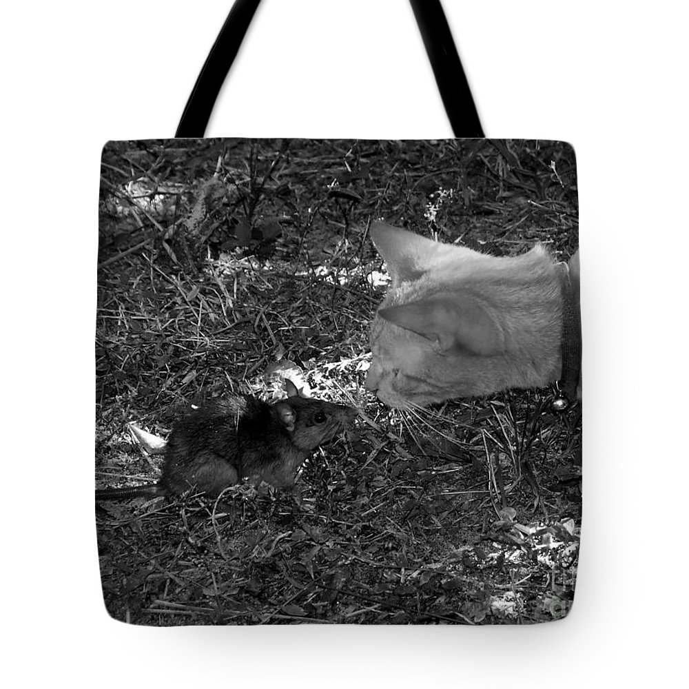 T Tote Bag featuring the photograph Curious by David Lee Thompson