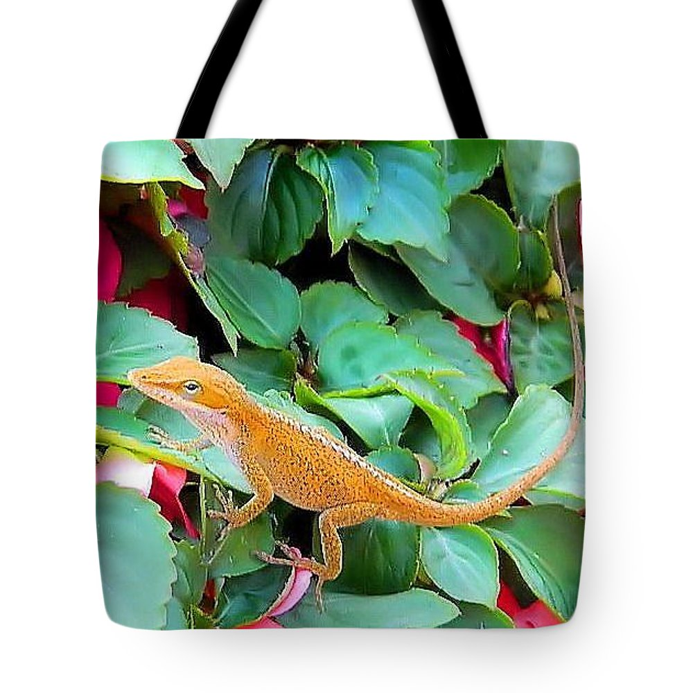 Anolis Tote Bag featuring the photograph Curious Lizard by Carol Fannaly