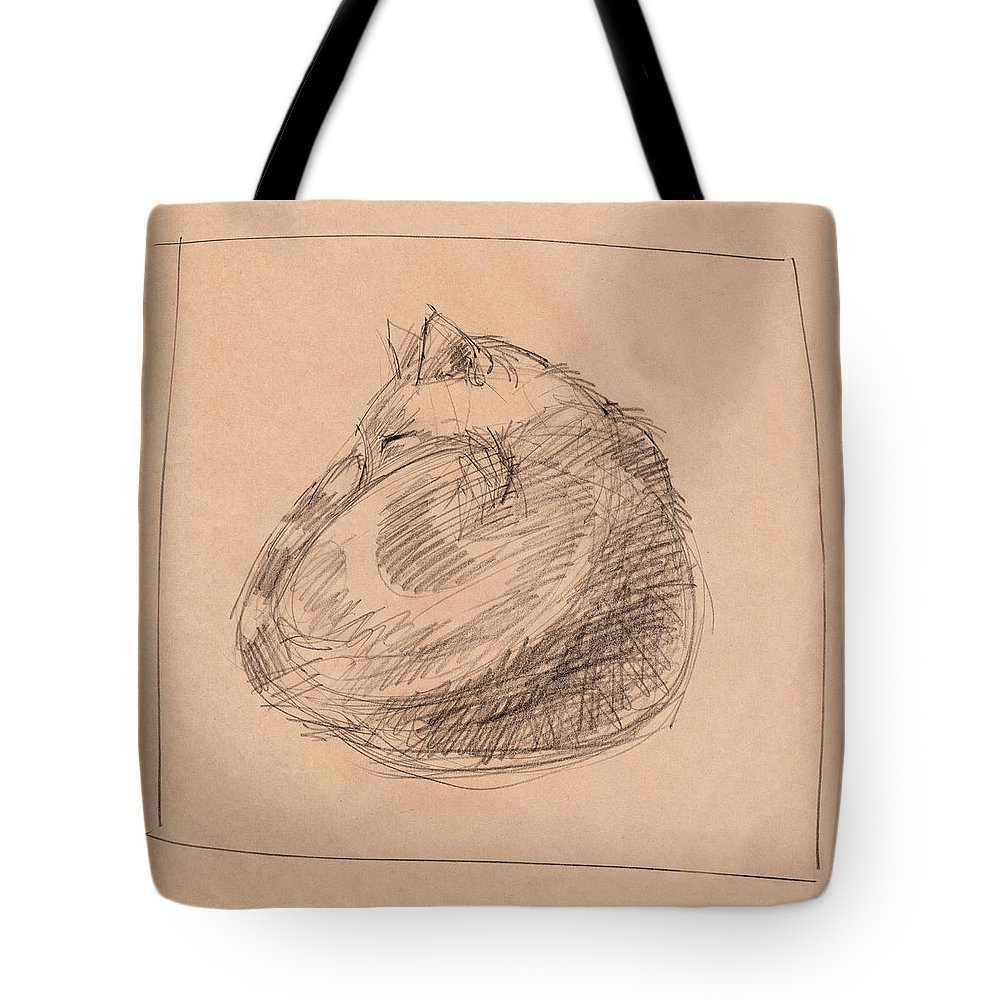 Cat Tote Bag featuring the drawing Curled Up by Judith Kunzle