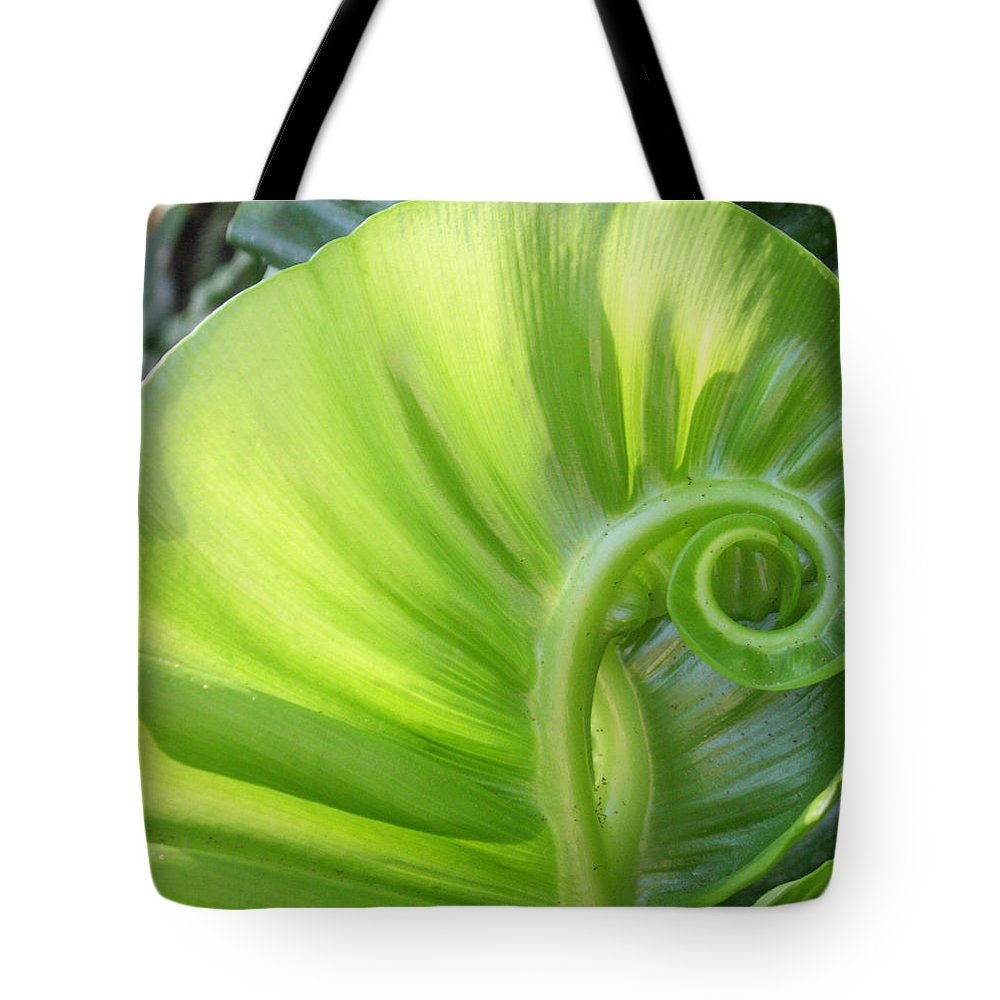 Leaf Tote Bag featuring the photograph Curly Leaf by Amy Fose