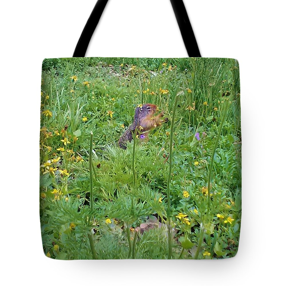 Flowers Tote Bag featuring the photograph Cute Critter by Eric Fellegy