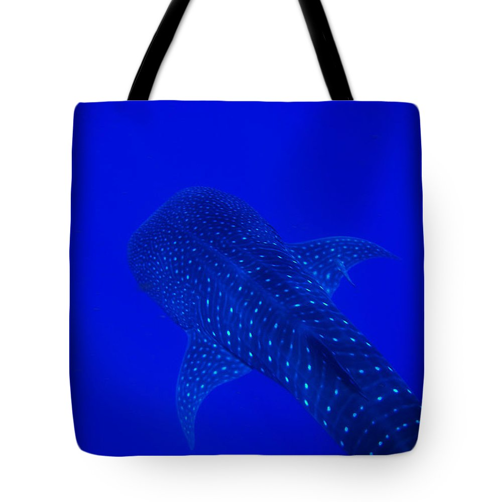 Whale Shark Tote Bag featuring the photograph Cute Little Fishy...... by Strato ThreeSIXTYFive