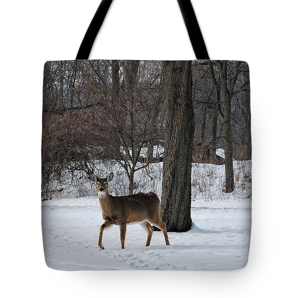 Deer Tote Bag featuring the photograph Cutting Through by Pamela Baker