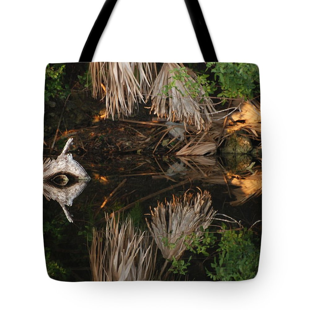 Sunset Tote Bag featuring the photograph Cyclops In Color by Rob Hans