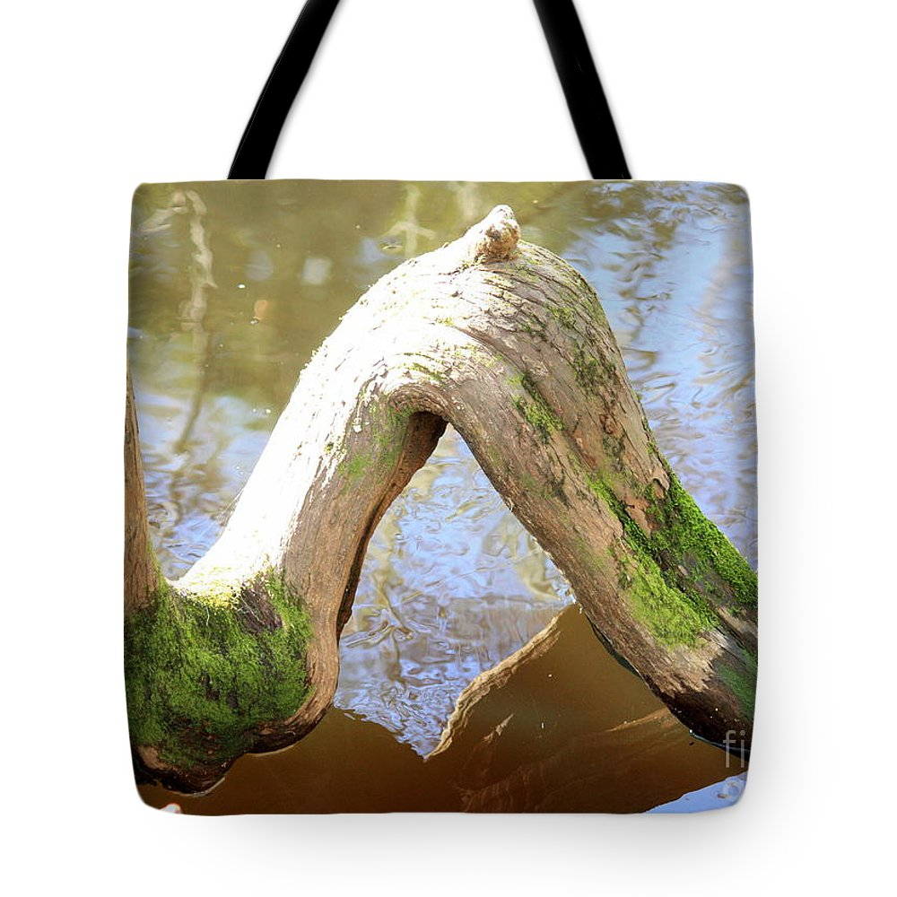 Cypress Knees Tote Bag featuring the photograph Cypress Knees by Carol Groenen