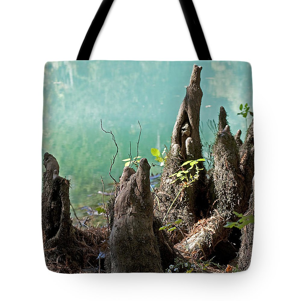 Nature Tote Bag featuring the photograph Cypress Knees In The Mist by Kenneth Albin
