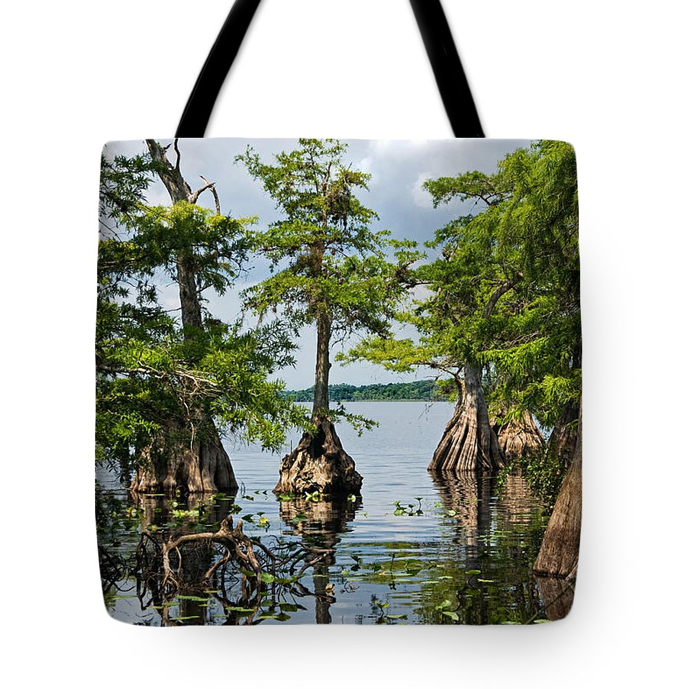 Trees Tote Bag featuring the photograph Cypress Reflections by Christopher Holmes