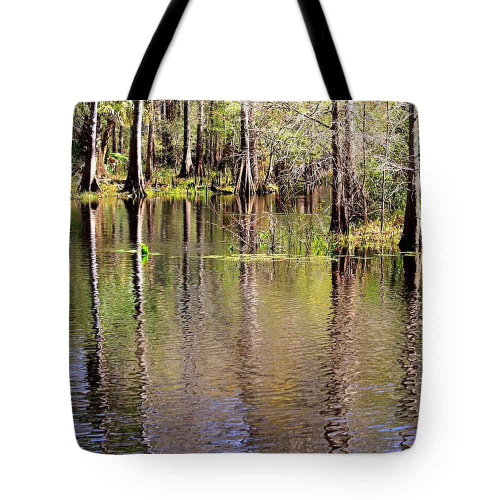 Cypress Trees Tote Bag featuring the photograph Cypress Trees Along The Hillsborough River by Carol Groenen