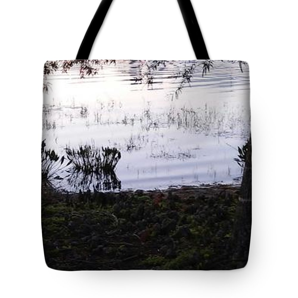 Tote Bag featuring the photograph Cypress Trees And Water2 by John Hiatt