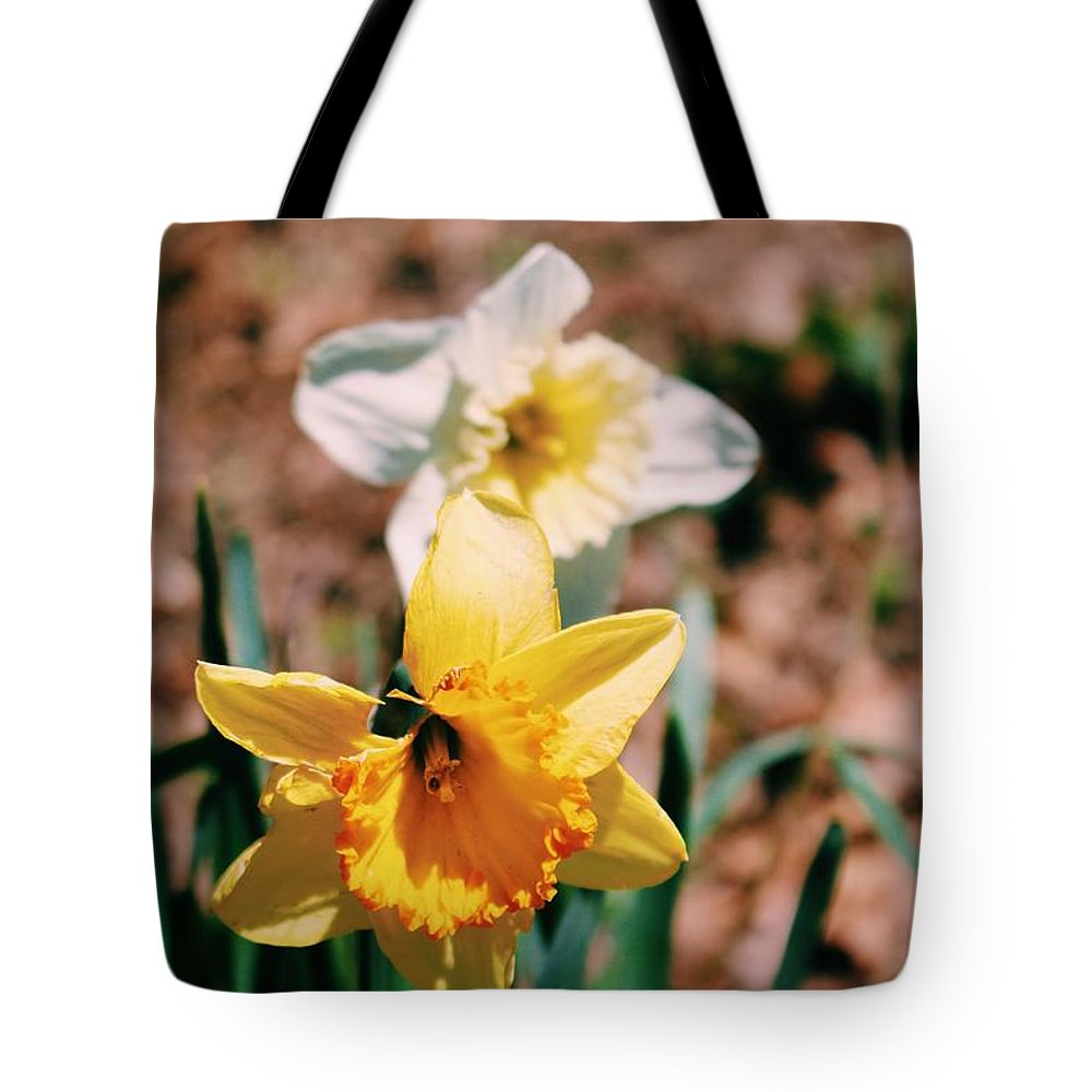 Flower Tote Bag featuring the photograph Daffodil by Brianna A