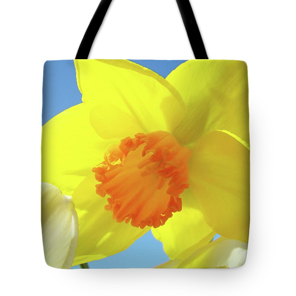 �daffodils Artwork� Tote Bag featuring the photograph Daffodil Flowers Artwork 18 Spring Daffodils Art Prints Floral Artwork by Baslee Troutman