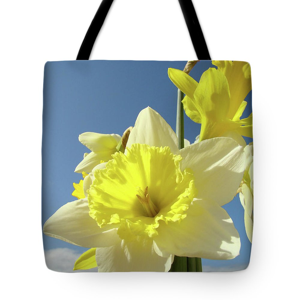 �daffodils Artwork� Tote Bag featuring the photograph Daffodil Flowers Artwork Floral Photography Spring Flower Art Prints by Baslee Troutman