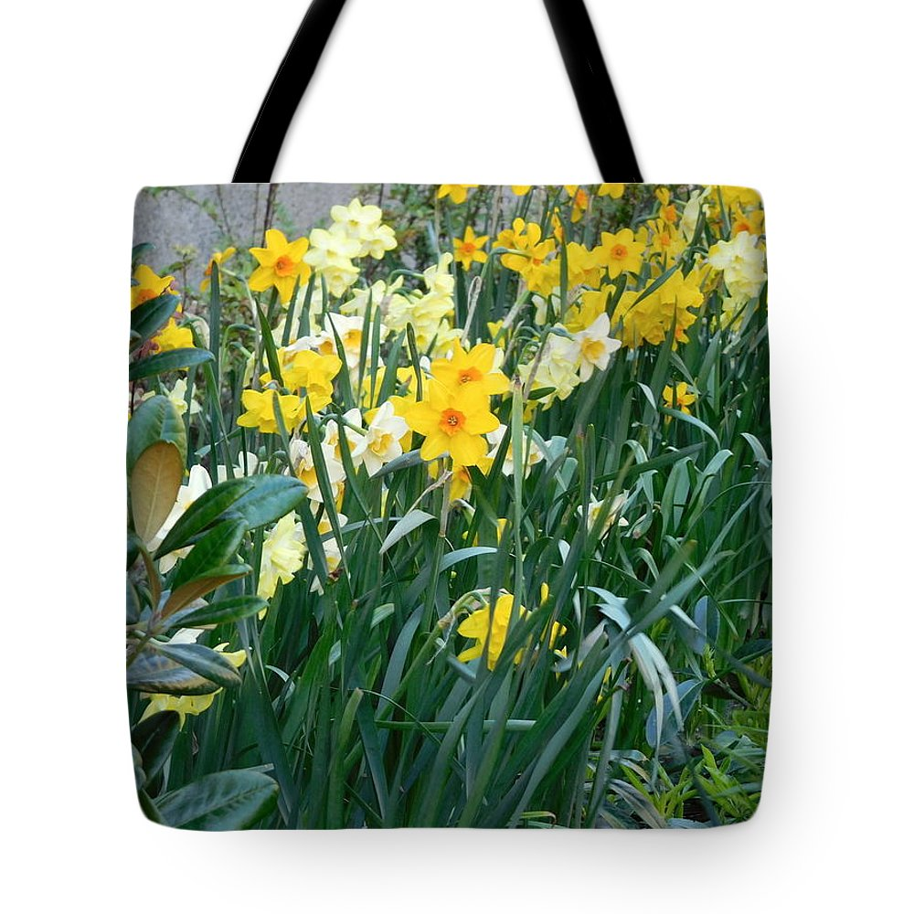 Scene Tote Bag featuring the photograph Daffodil Garden by Maro Kentros