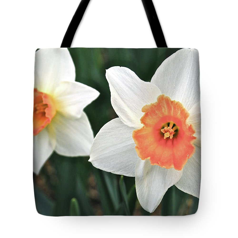 Daffodil Tote Bag featuring the photograph Daffodils Orange And White by Michael Peychich