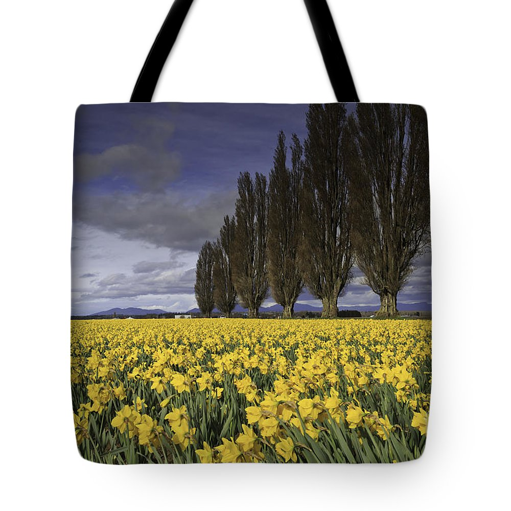 Washington Tote Bag featuring the photograph Daffodils by Tim Hauf