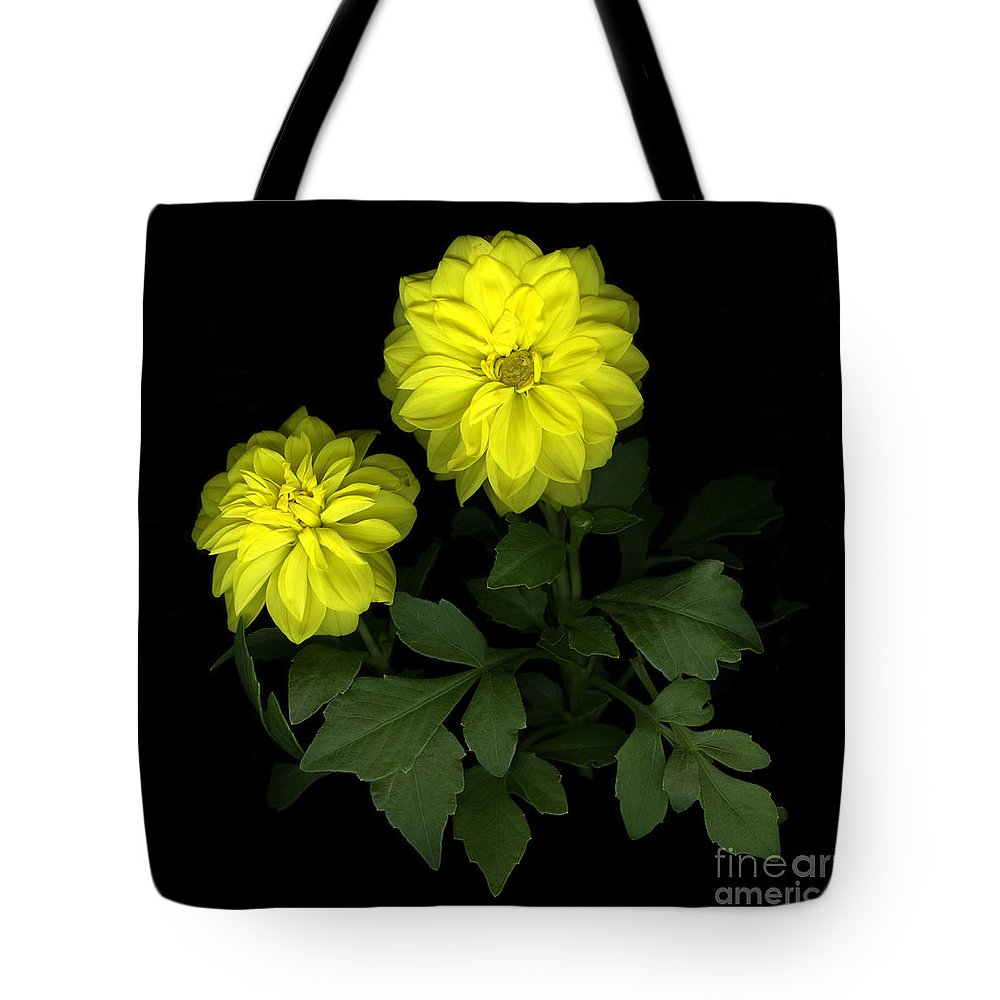 Yellow Tote Bag featuring the photograph Dahlia by Christian Slanec