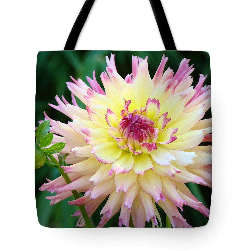 Flowers Tote Bag featuring the photograph Dahlia Floral Pink Yellow Flower Garden Baslee Troutman by Baslee Troutman