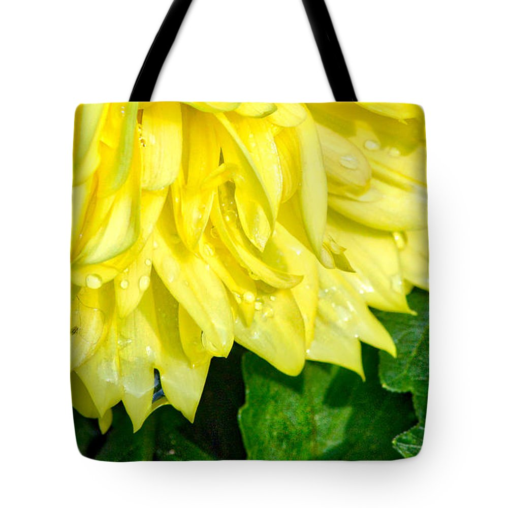 Dahlia Tote Bag featuring the photograph Dahlia Sunshine by Karin Everhart
