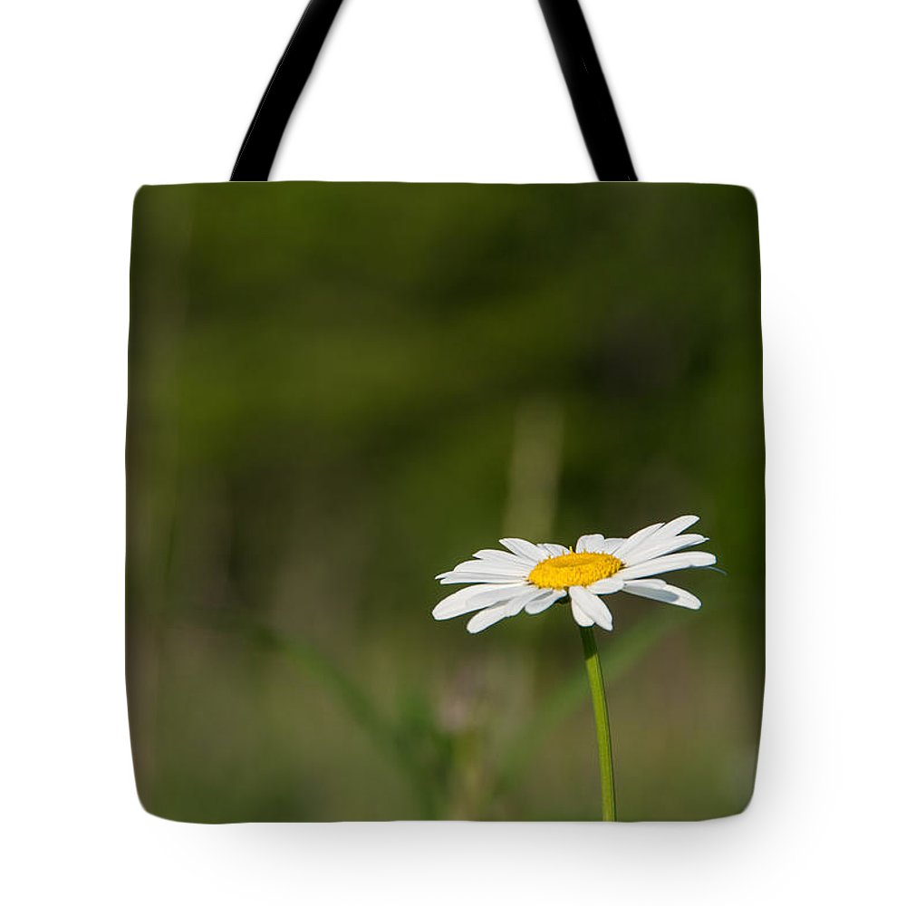 Wildflower Tote Bag featuring the photograph Daisey by Darwin White