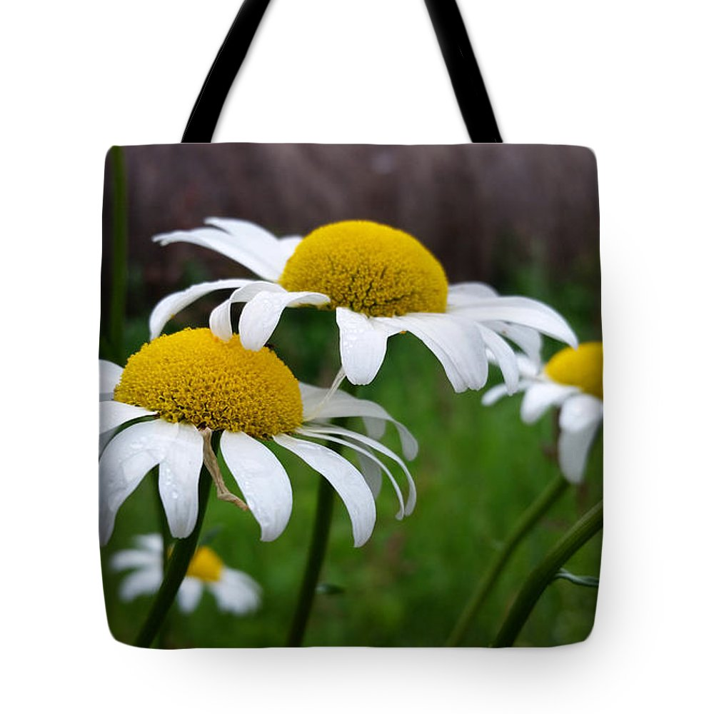 Daisies Tote Bag featuring the photograph Daisies by Brook Burling