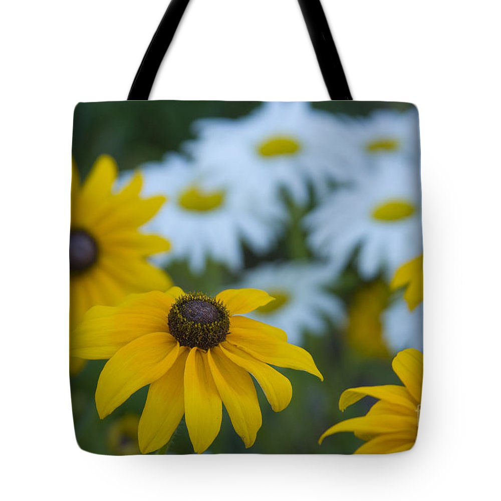 Daisy Tote Bag featuring the photograph Daisies by Idaho Scenic Images Linda Lantzy