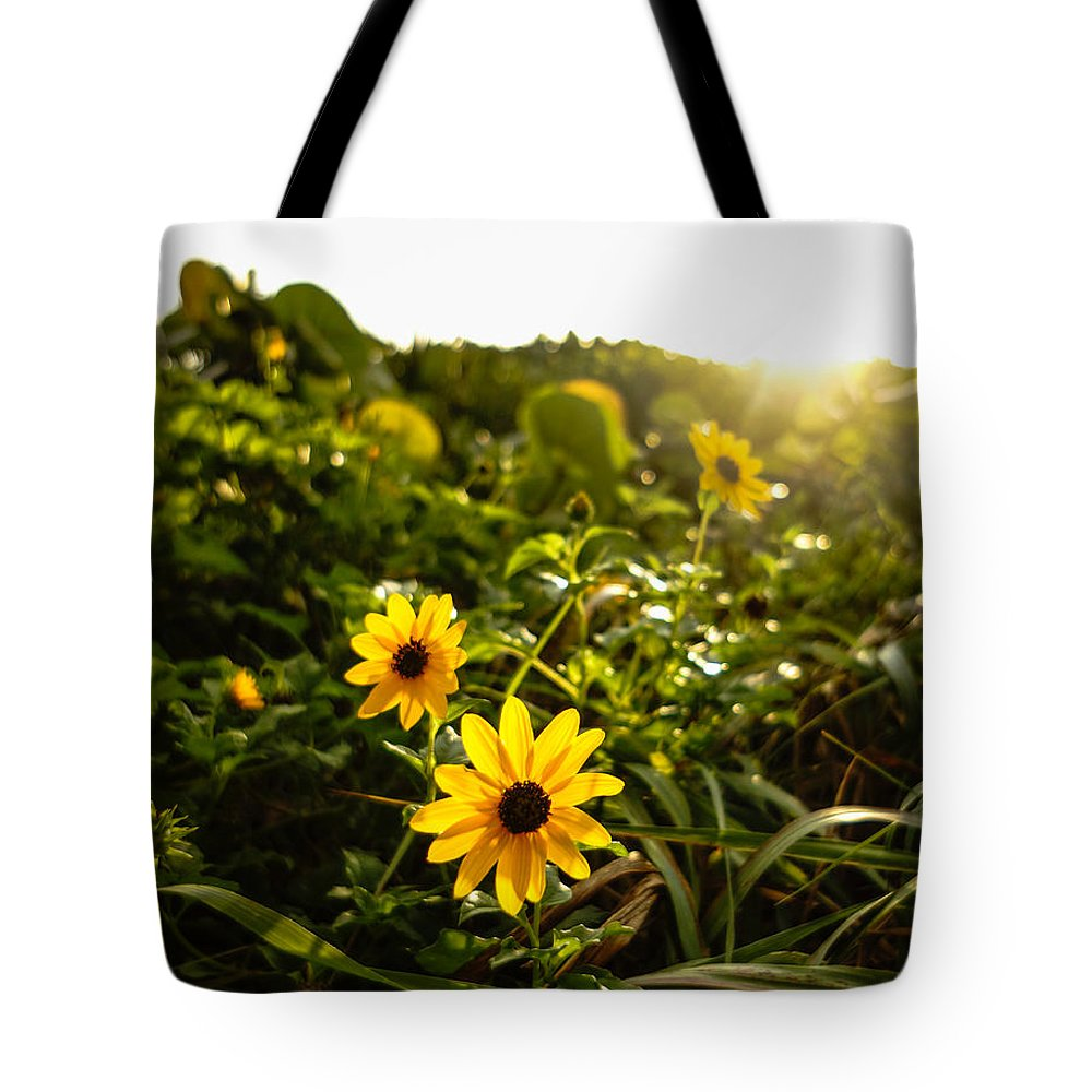 Florida Tote Bag featuring the photograph Daisies Tangled Sunrise Delray Beach Florida by Lawrence S Richardson Jr
